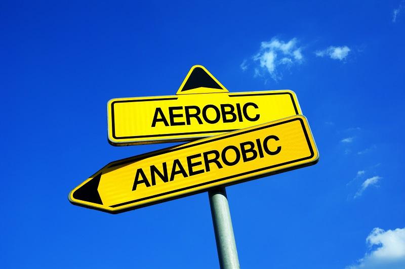 Aerobní versus Anaerobní rozložitelnost - co to vlastně je?