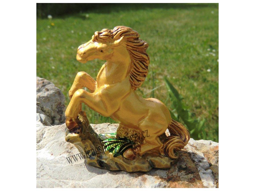 Kůň úspěchu C