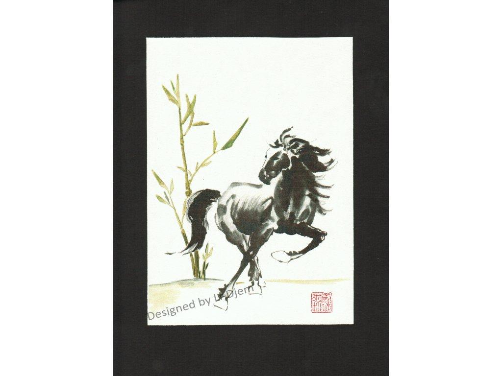 Cválající kůň 3 B
