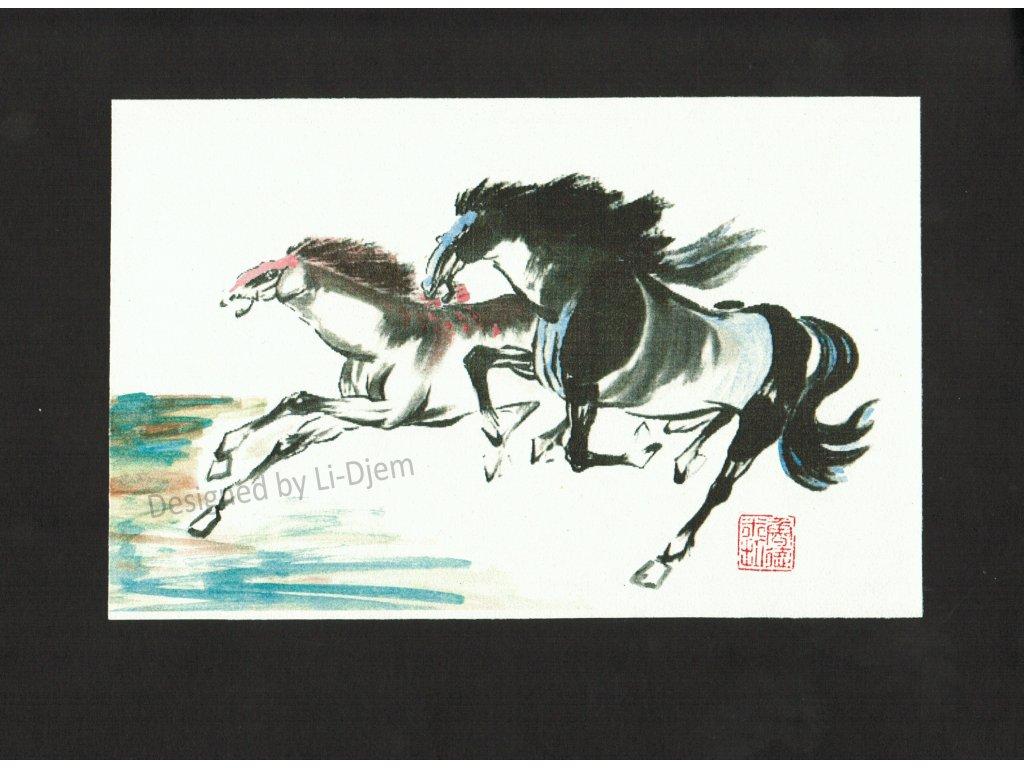 Pár cválajících koní B