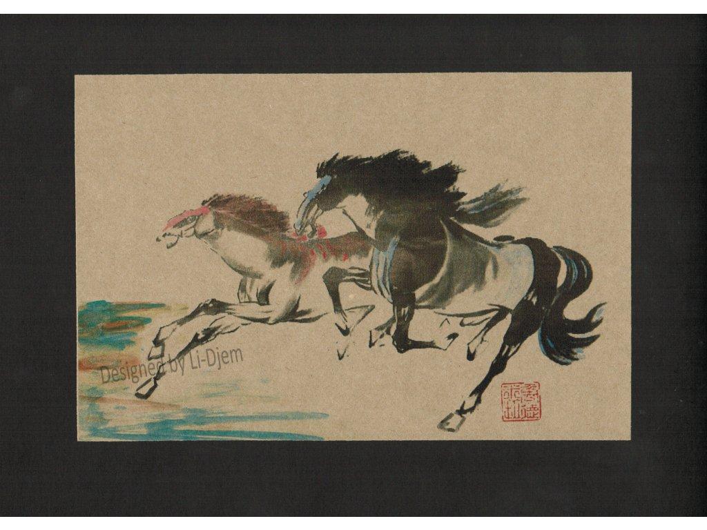 Pár cválajících koní H