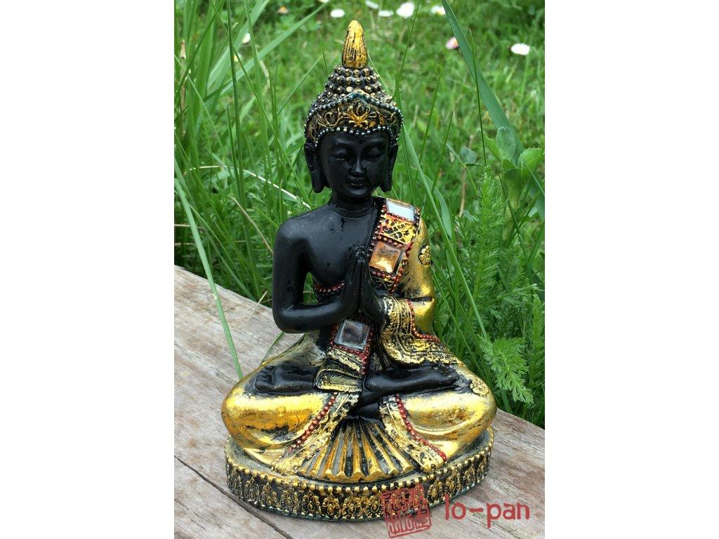 Buddha sedící C