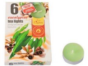 svíčka čajová vonná EUKALYPTUS (6ks) (hoří 6x3-4hod)