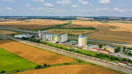 dynin-tov