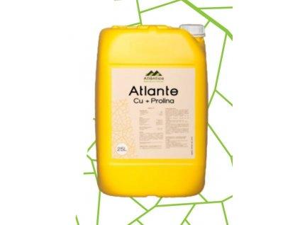 Atlante Cu+Prolina