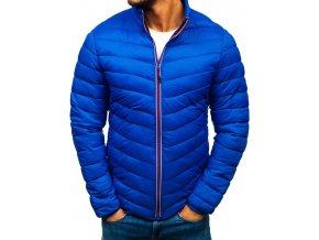 Pánská zimní sportovní bunda modrá PLY1015