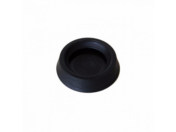 replacement plunger