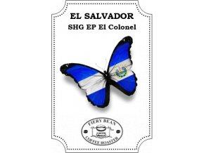 Salvadorelcolonel