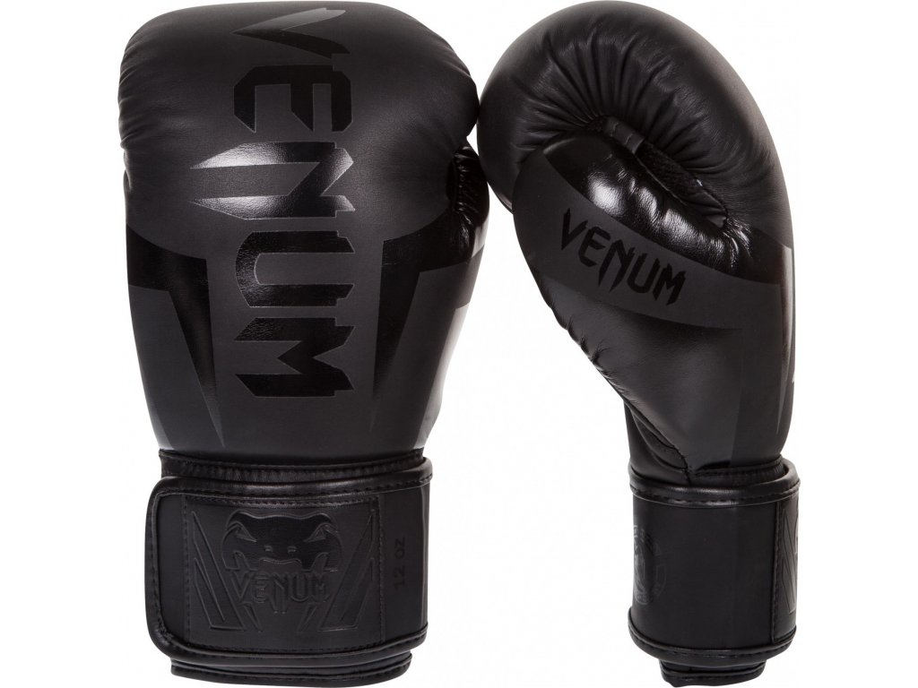 Boxing Gloves Venum Elite - Neo Matte/Black
