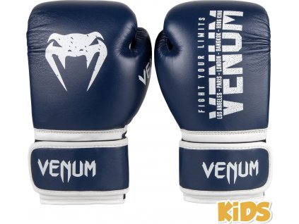 KIDS Boxing Gloves Venum Signature - Navy Blue