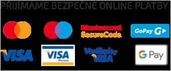 Přijímáme bezpečné online platby