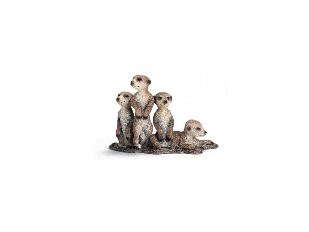 21795 schleich 14388 mladata surikaty