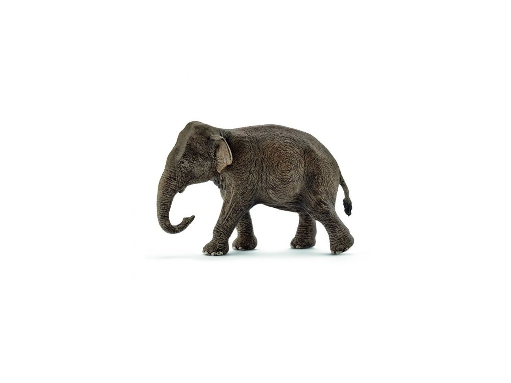 22257 schleich 14753 slon indicky samice 2017