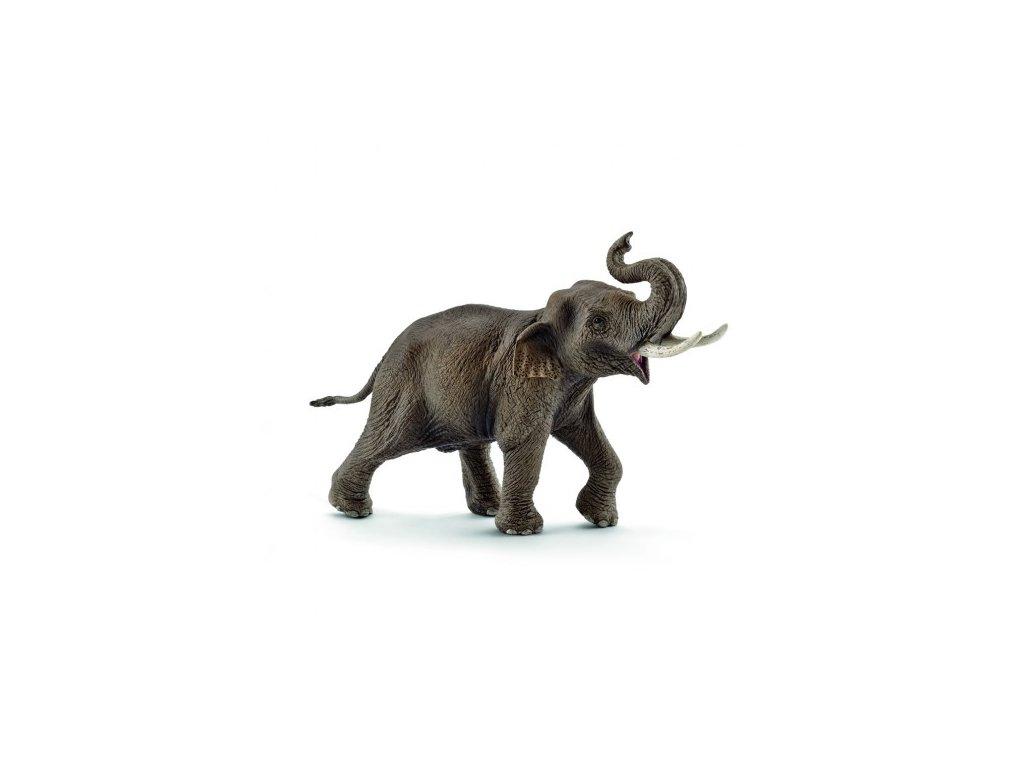 22260 schleich 14754 slon indicky samec 2017