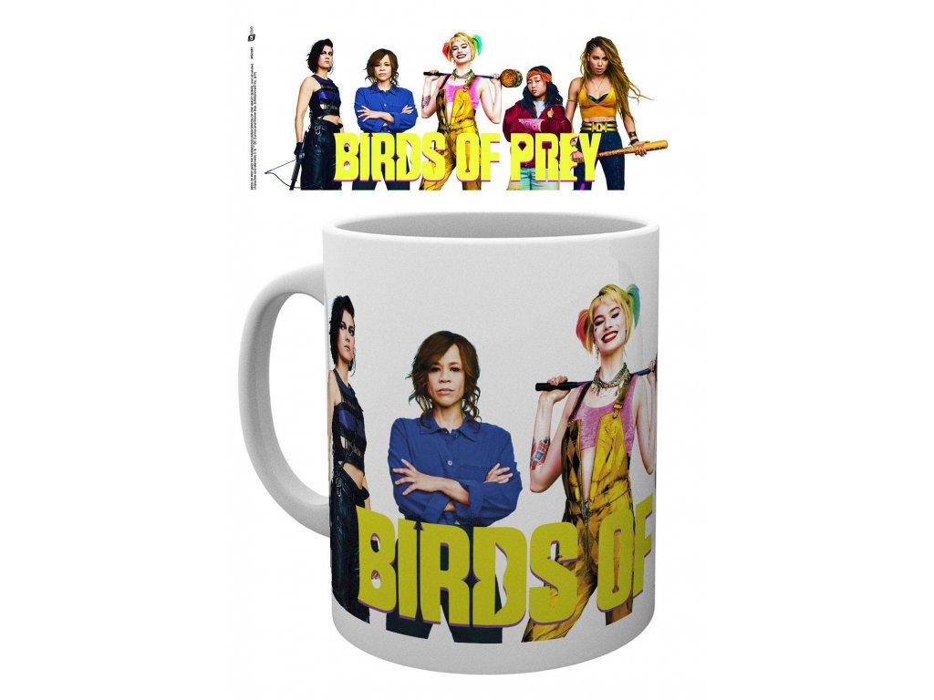 Birds of Prey Mug Group GB eye