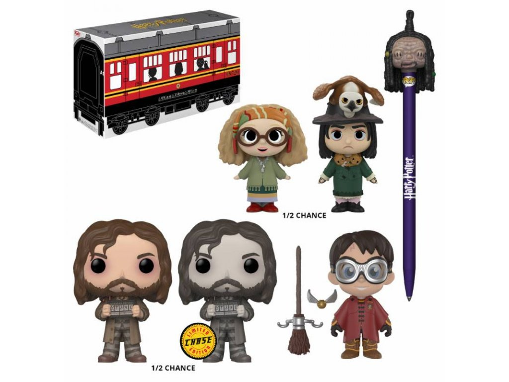 Harry Potter Collector Mystery Hogwarts Limited Edition Funko