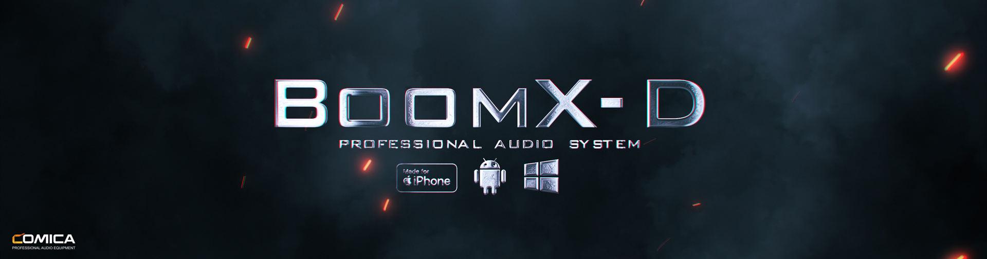 BoomX