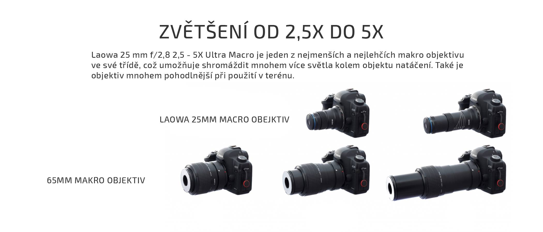 film-technika-laowa-25-mm-f-2-8-5-x-ultra-macro-25-mm-vs-65-mm