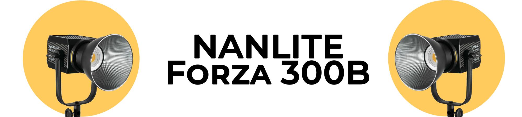 Forza300B