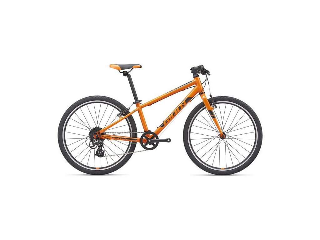 Giant ARX 24 2021, Orange