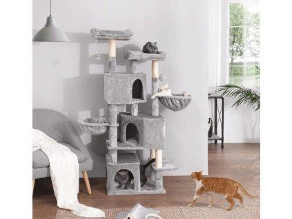 sedy kocici strom