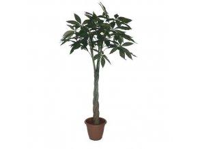 Arálie, umělá rostlina, 130 cm