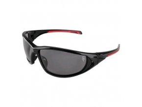 Ochranné brýle CXS Panthera s kouřovými skly