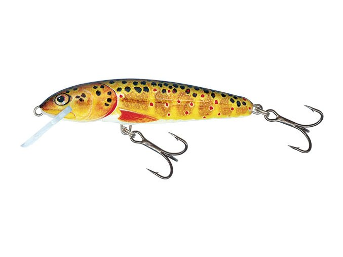 Salmo wobler Minnow Floating Trout