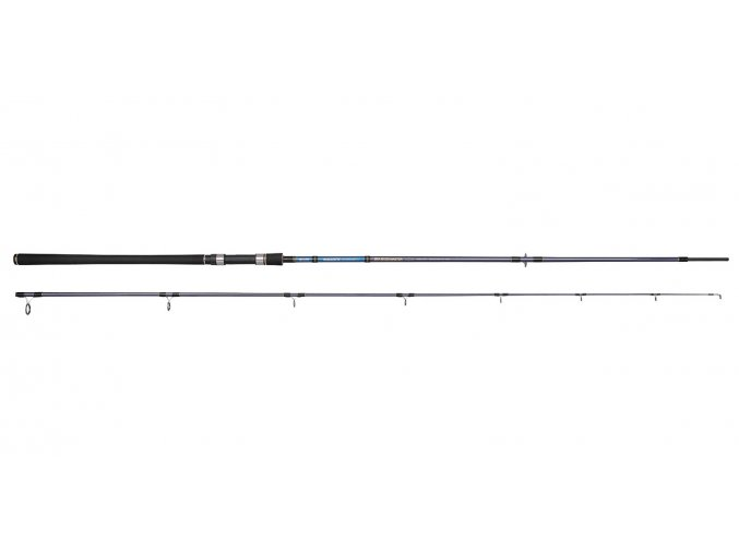 SPRO prut Salty Beast Sea Bass Master 3,3m 40-120g 2díl