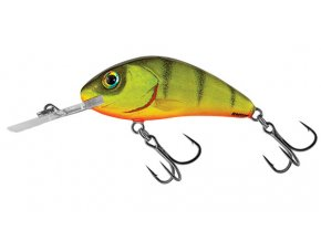 Salmo wobler Rattlin Hornet Floating Hot Perch
