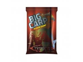Big Carp Black Carp