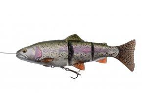 4D Line Thru Trout Rainbow Trout