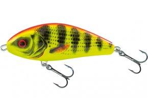 Fatso Bright Perch