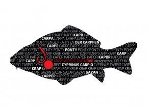 Delphin nálepka série Words Kapr