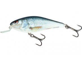 Salmo wobler Executor Shallow Runner Real Dace