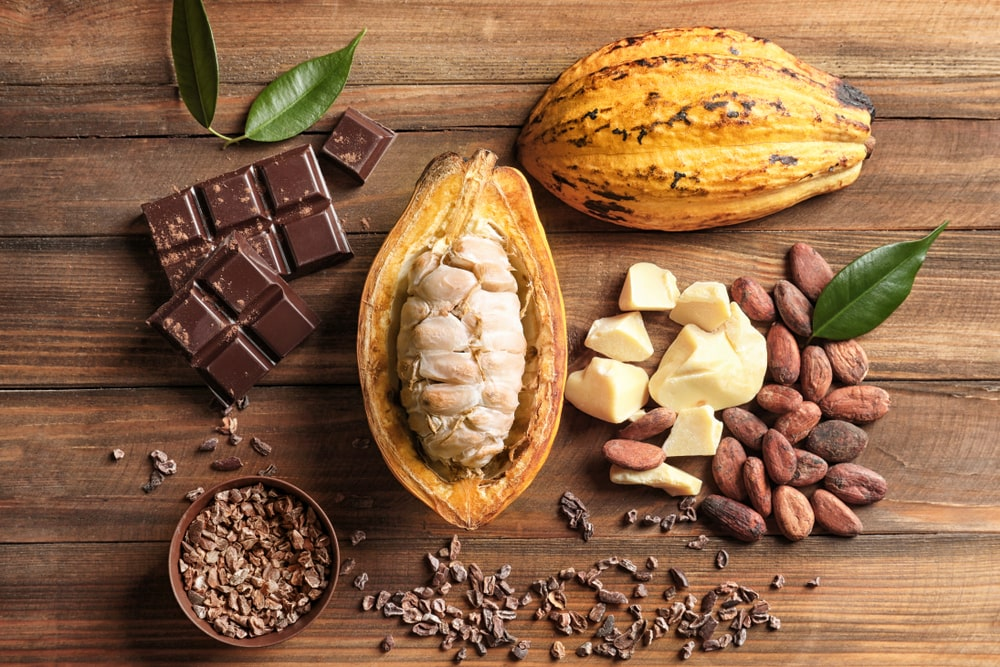 Cocoa bean, cocoa powder, chocolate - Fit-day