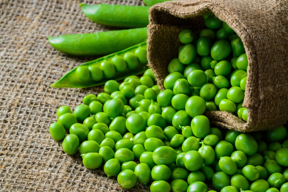 Fresh green peas in a hull Fit-day