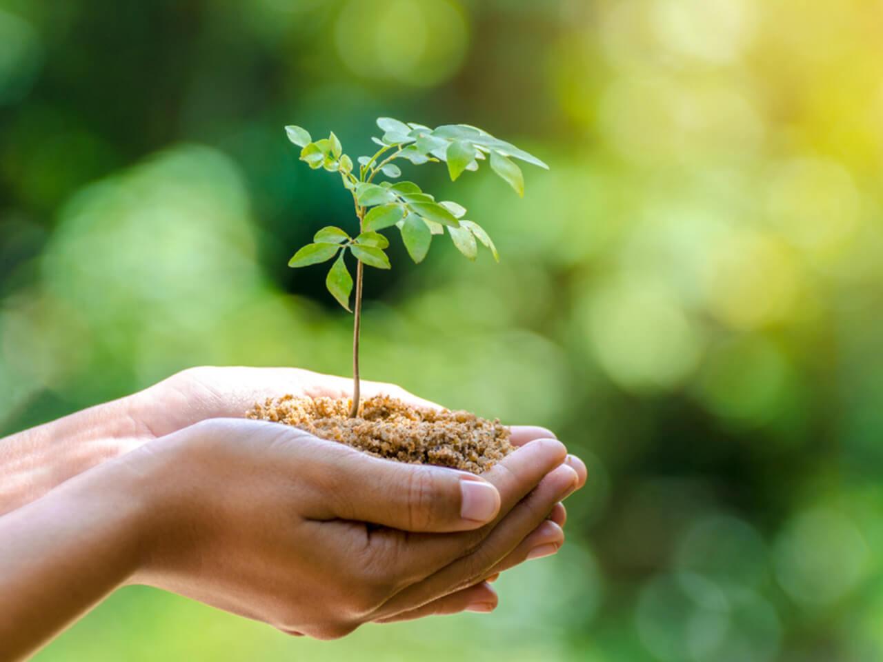 Den země: Ve Fit-day nám na přírodě záleží