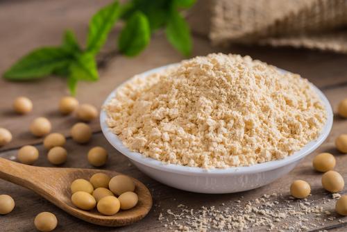 Sójový protein