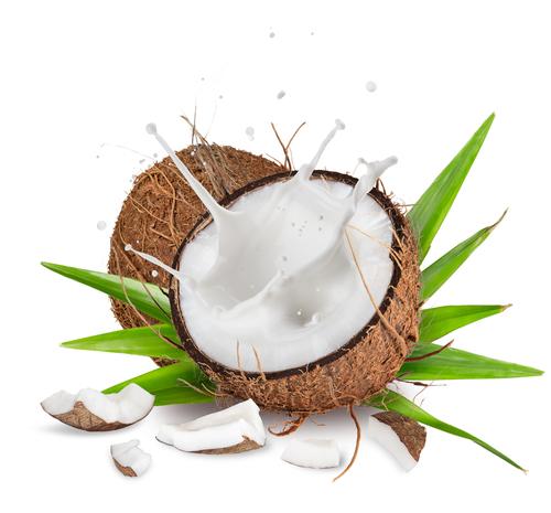 kokosovy%20orech