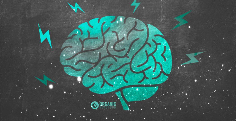 Gaba jako potřebná brzda v mozku