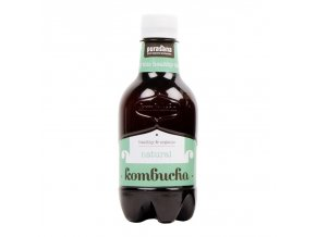 Purasana Kombucha BIO 330 ml natural