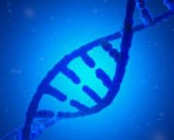 VÝSLEDKY DNA TESTŮ A DĚDIČNOST