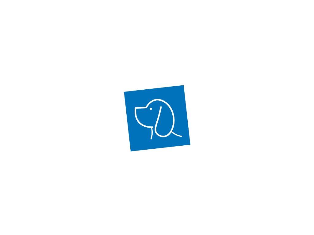 1221 h639 combibreed australsky cobberdog