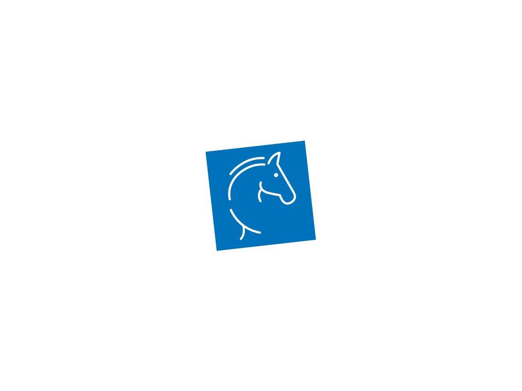 kůň hlava