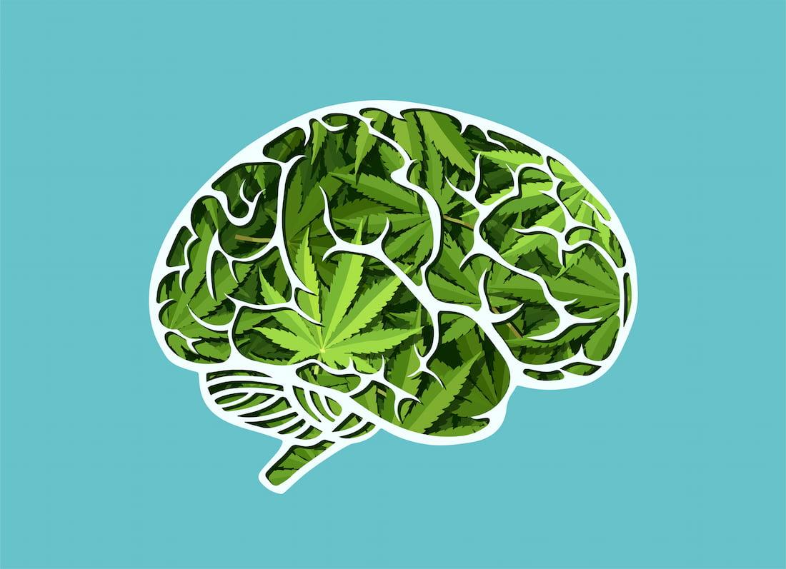 Potenciál CBD při léčbě mozkové mrtvice