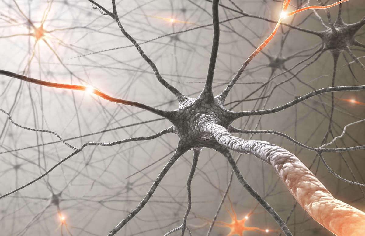 Fitcann posiluje centrální nervovou soustavu