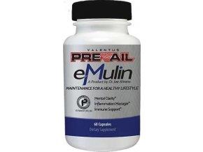 Predchádzajúce eMulin M