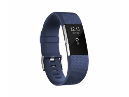 Fitbit Charge 2 Blue Silver - Large