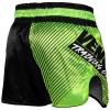 muay thai shorts venum training camp 2 f2